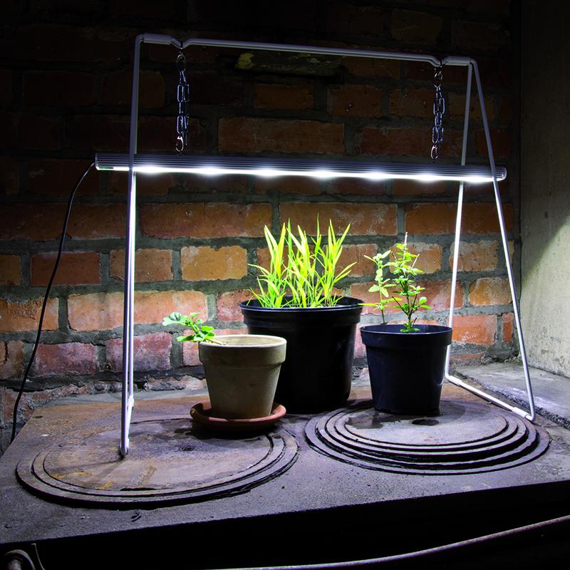 Plantbelysning med upphängning för odling av växter inomhus