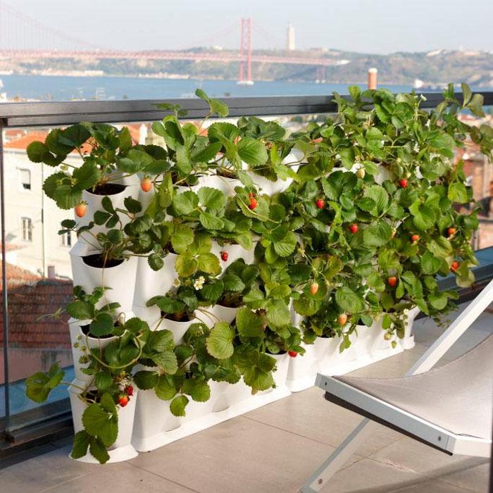 Minigarden Vertical - Växtvägg, grå,