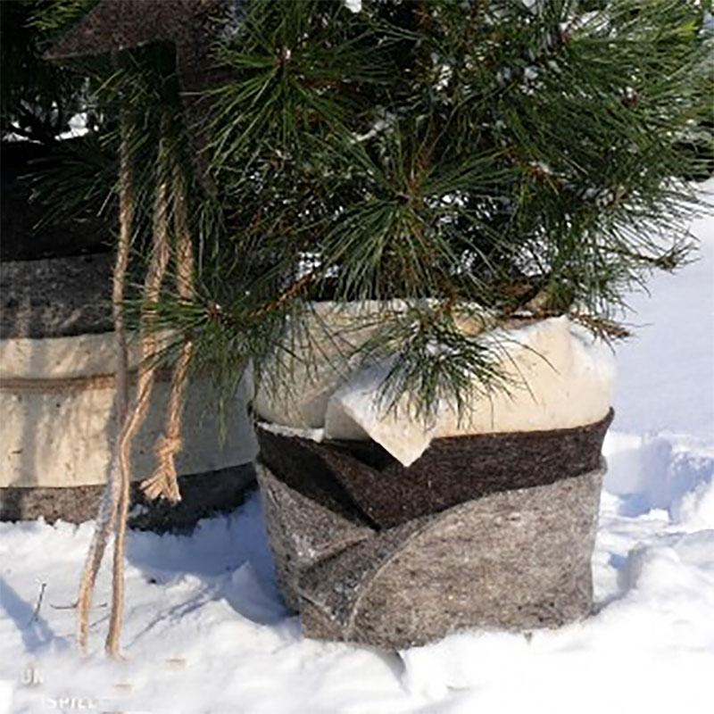 Vinterskyddsmatta fårull,  stengrå-Ullmatta för skydd av rötter mot kyla och frost