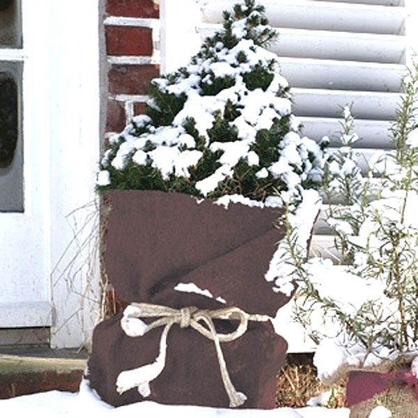 Frostskyddsmatta jutefilt, mörkbrun, Frostkyddsmatta vinterskydd
