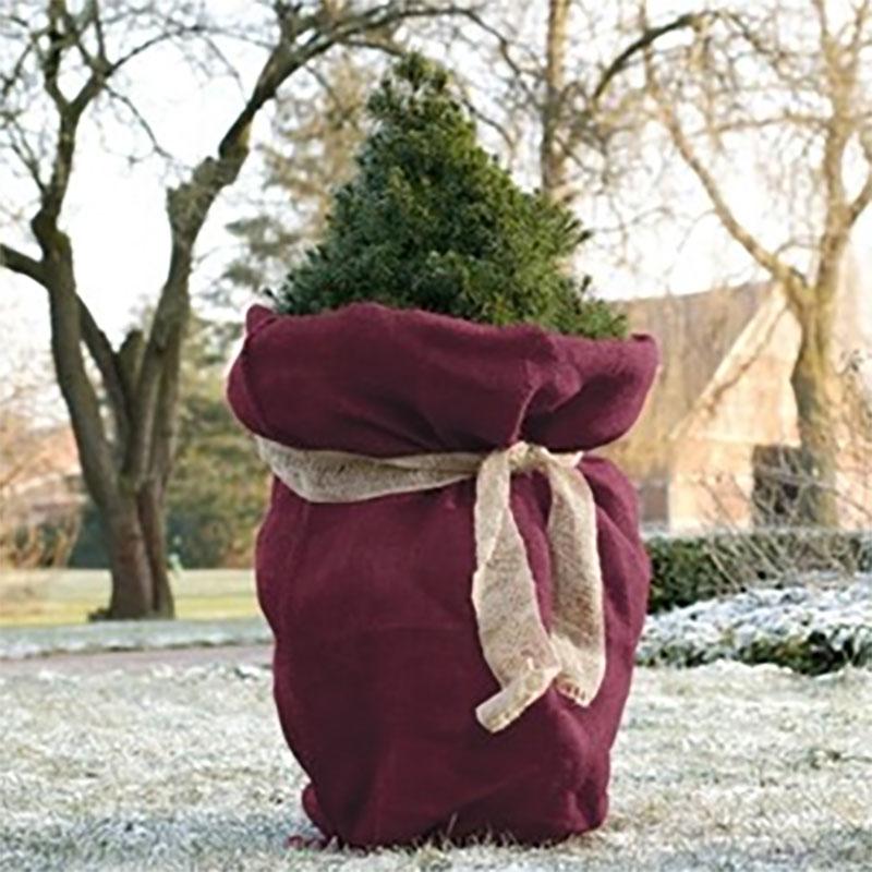 Jutesäck stor, Blackberry-Vinterskydd för växter jutesäck