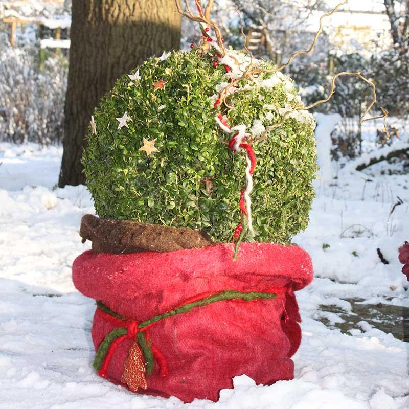 Frostskyddsmatta jutefilt, röd-Frostskydd till trädgårdsväxter