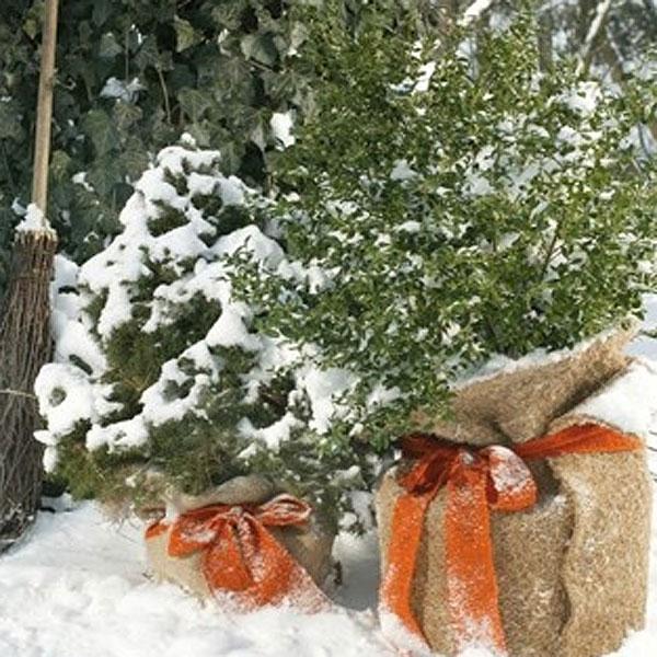 Vinterskyddsmatta Cocos X-TREME, Large-Vinterskydds matta i kraftig kokosfiber