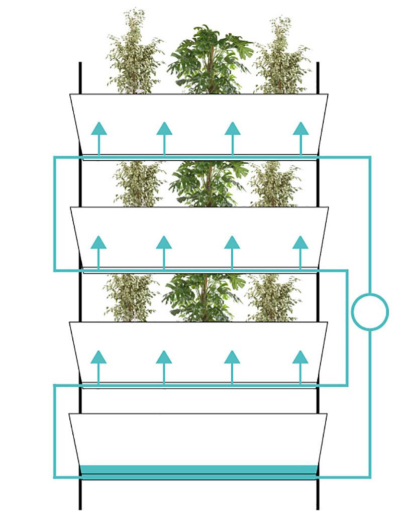 Så här fungerar vplant väggodling med bevattning