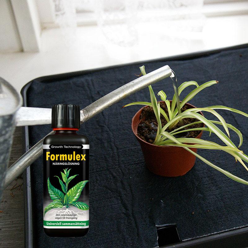 Underbevattningsbricka för frösådd och odling med Formulex