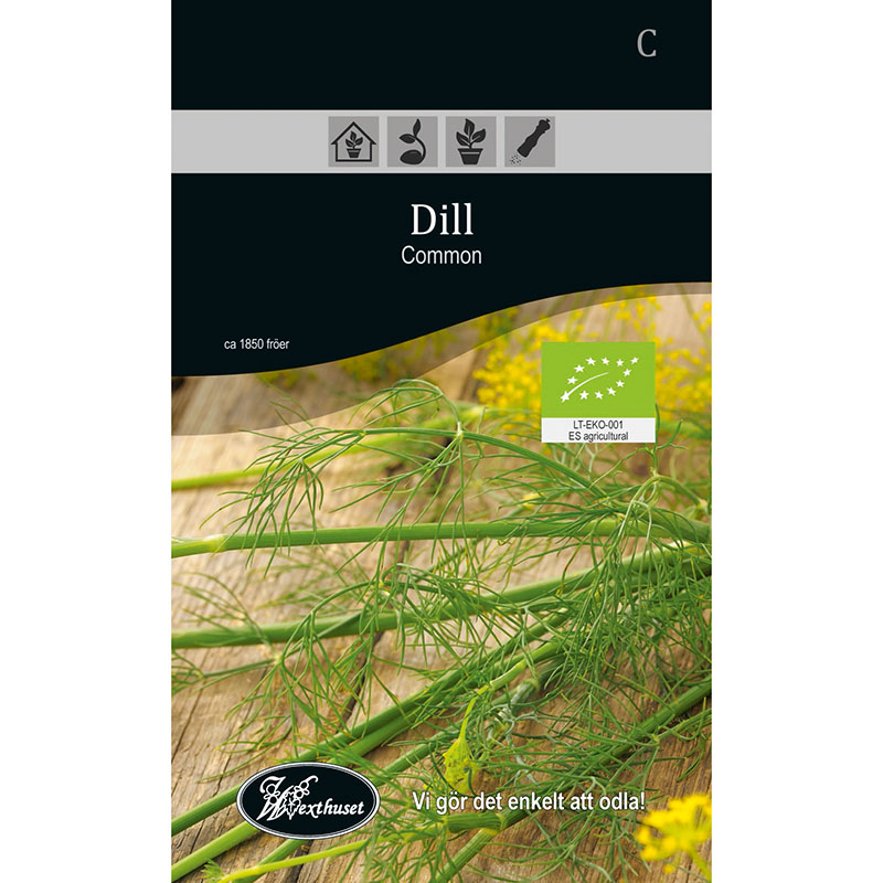 Frö för odling av ekologisk Dill - Common