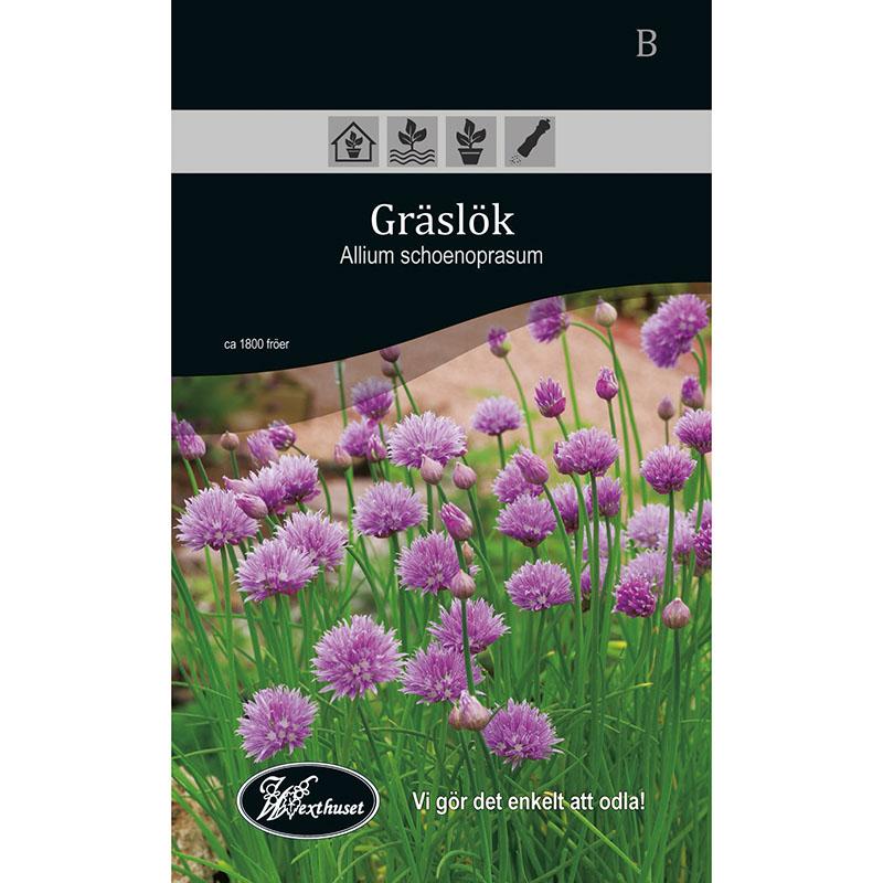 Frö för odling av Gräslök - Allium Schoenprasum