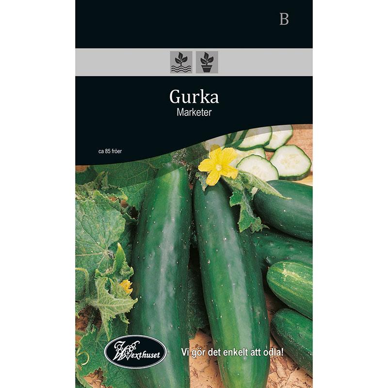 Frö för odling av Gurka - Marketer
