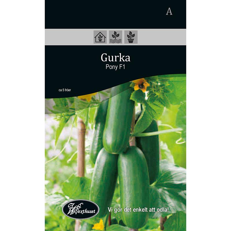 Frö för odling av Gurka - Pony F1