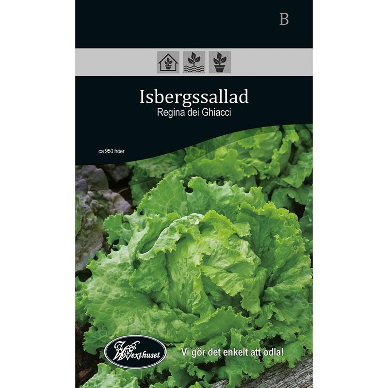 Frö för odling av Isbergssallad - Regina dei Ghiacci