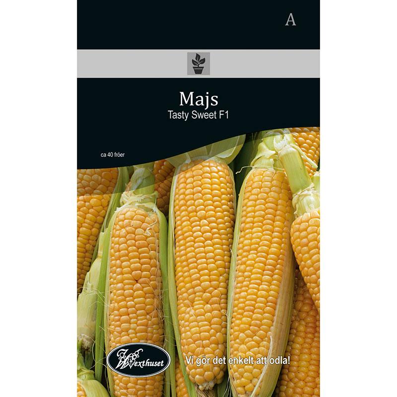Frö för odling av Majs - Tasty Sweet F1