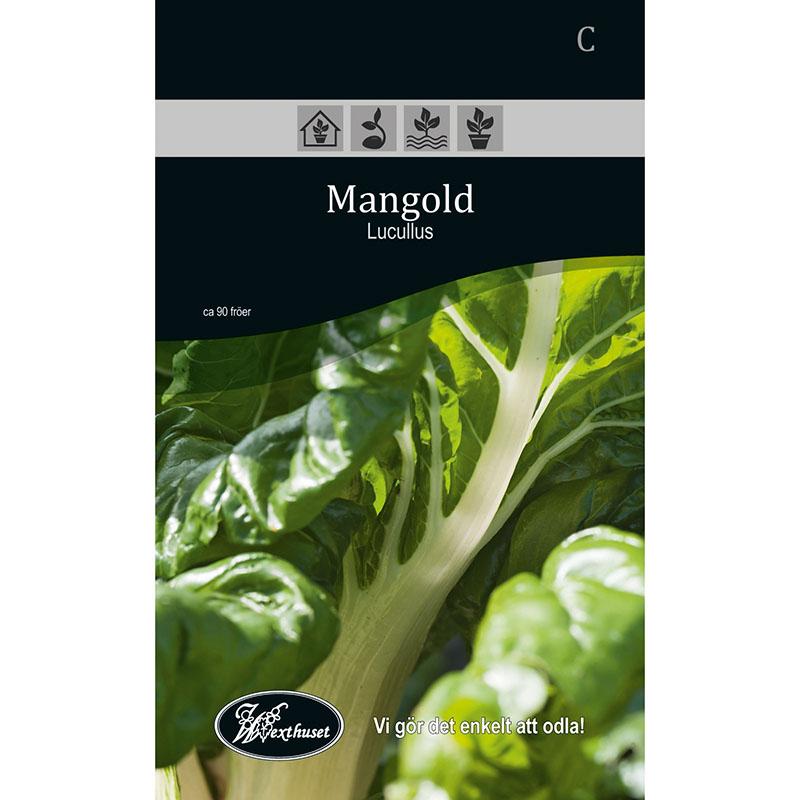 Frö för odling av Mangold - Lucullus