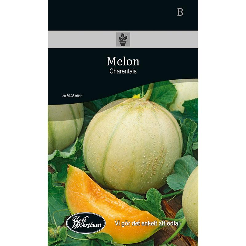 Frö för odling av Melon - Charentais