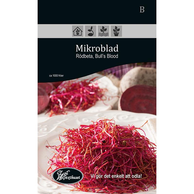 Frö för odling av Mikroblad - Rödbeta Bull