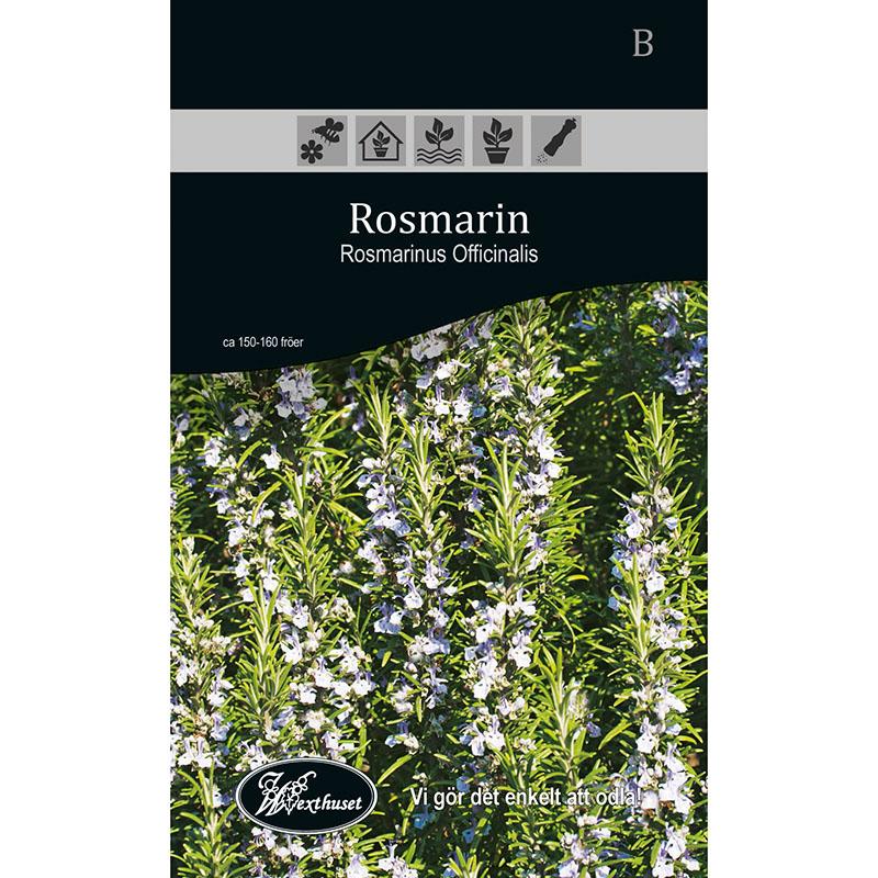 Frö för odling av Rosmarin