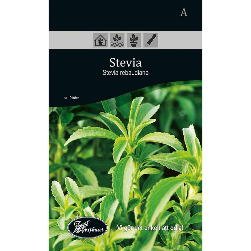 Frö för odling av Stevia