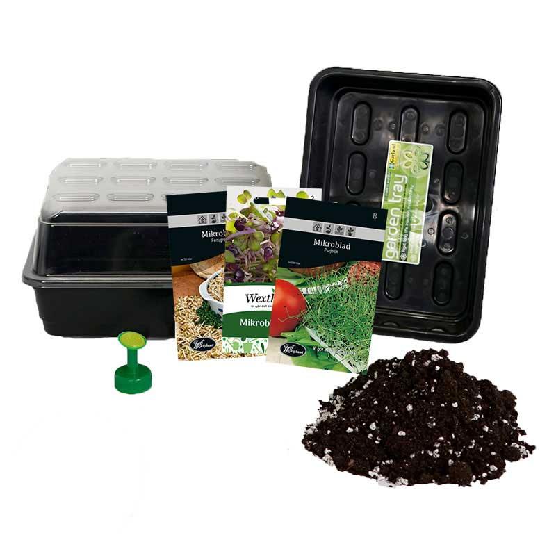 Odlingspaket för mikroblad