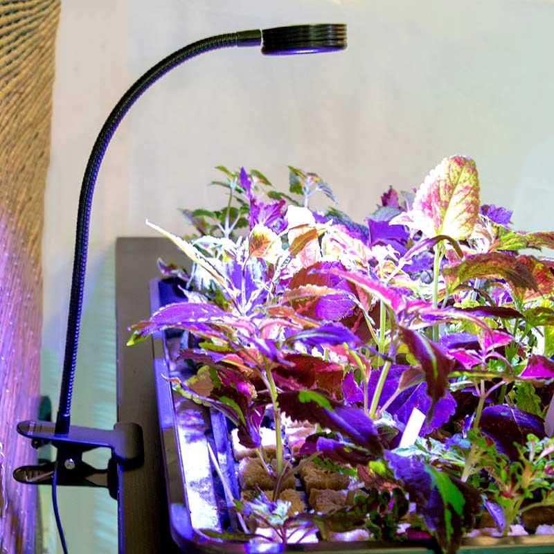 LED växtlampa för skrivbord