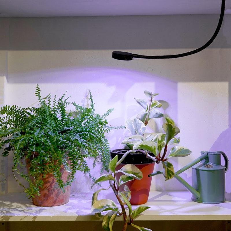 Orion, växtbelysning i bokhylla