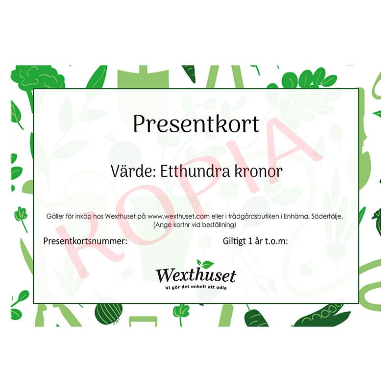 Presentkort på Wexthuset, 100 kr