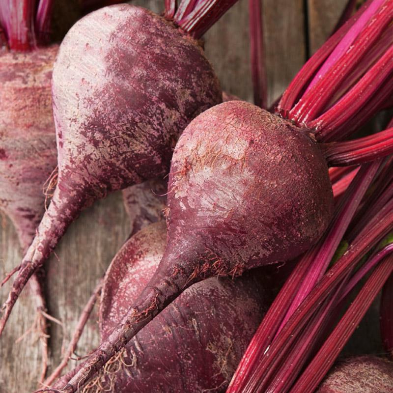 Ekologiskt frö till Rödbeta - Detroit 2