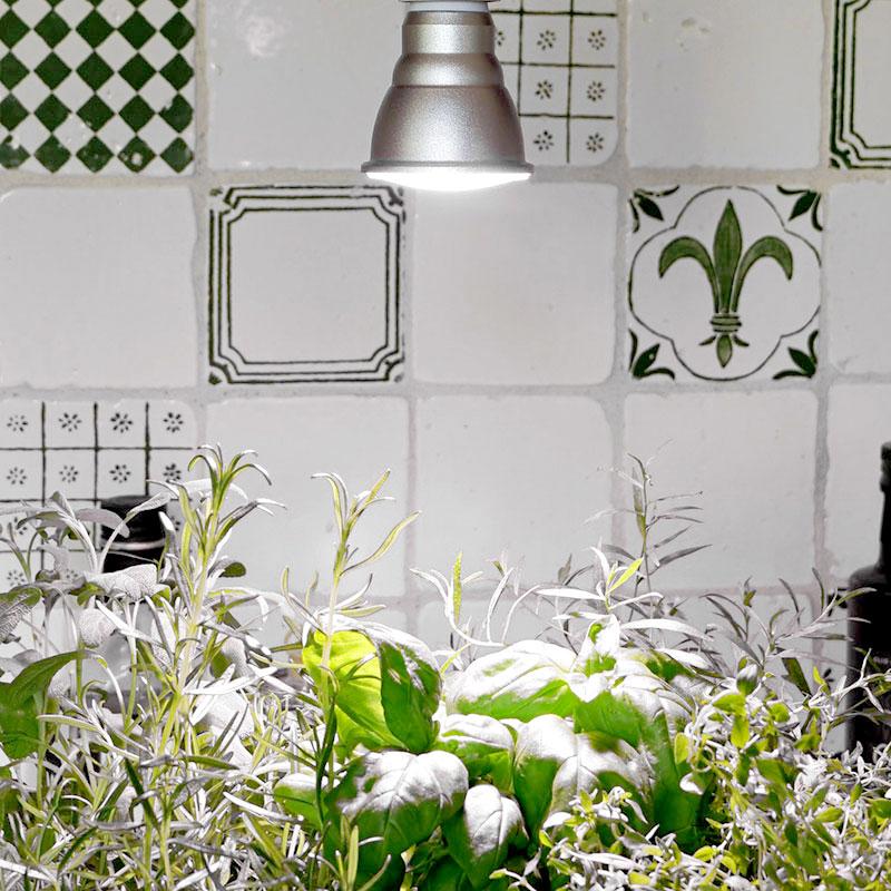Växtlampa Primula 10 watt för inomhusodling av växter