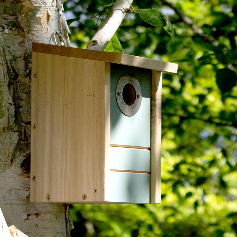 Fågelholk, multibox med tre funktioner i en.
