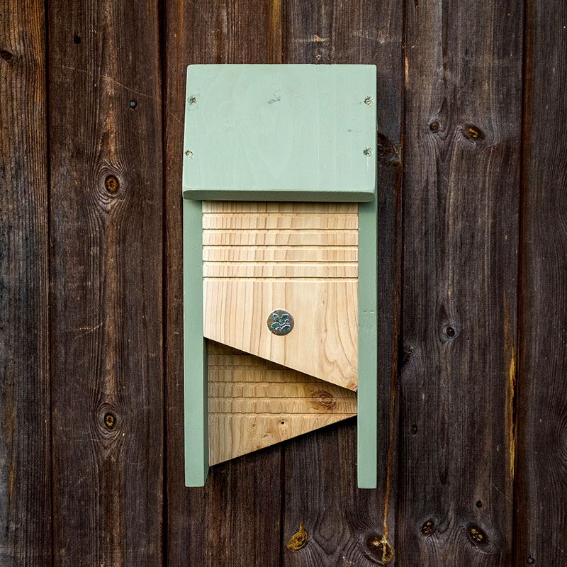 Fladdermusholken 'Bat Box' upphängd på trävägg.