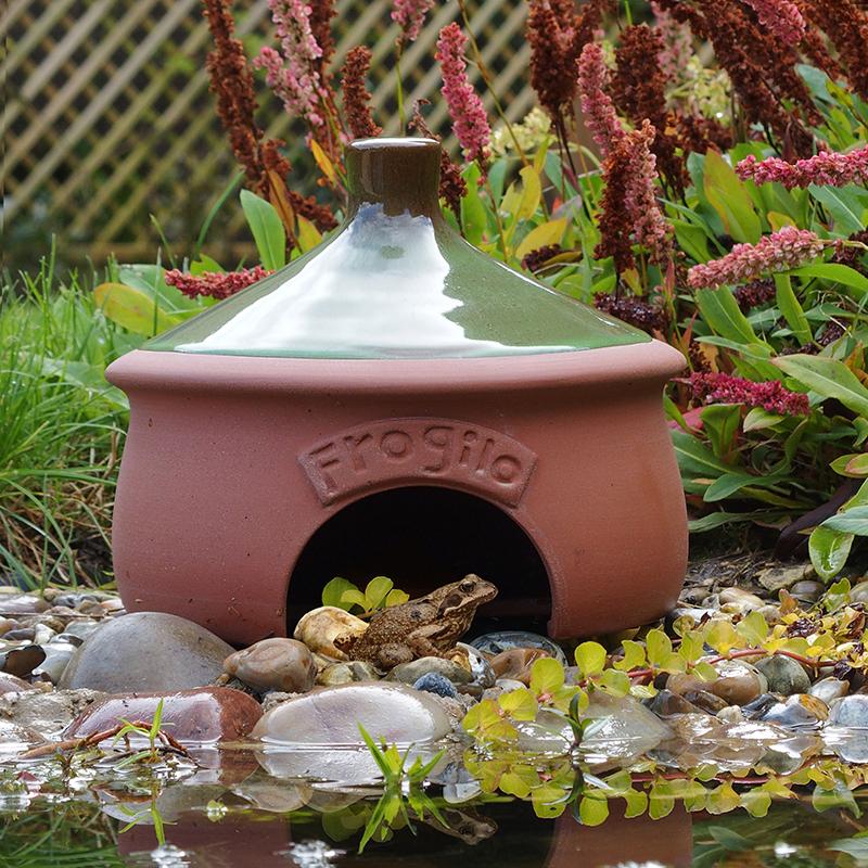 Grodhus - Frogilo Frog & Toad home-Grodhus/paddhus - bo och övervintring