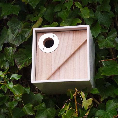 Urban fågelhus för småfåglar