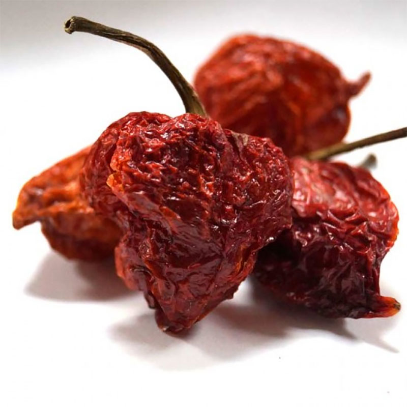 Chili 'Carolina Reaper'