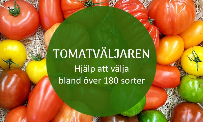 Få hjälp att välja tomat