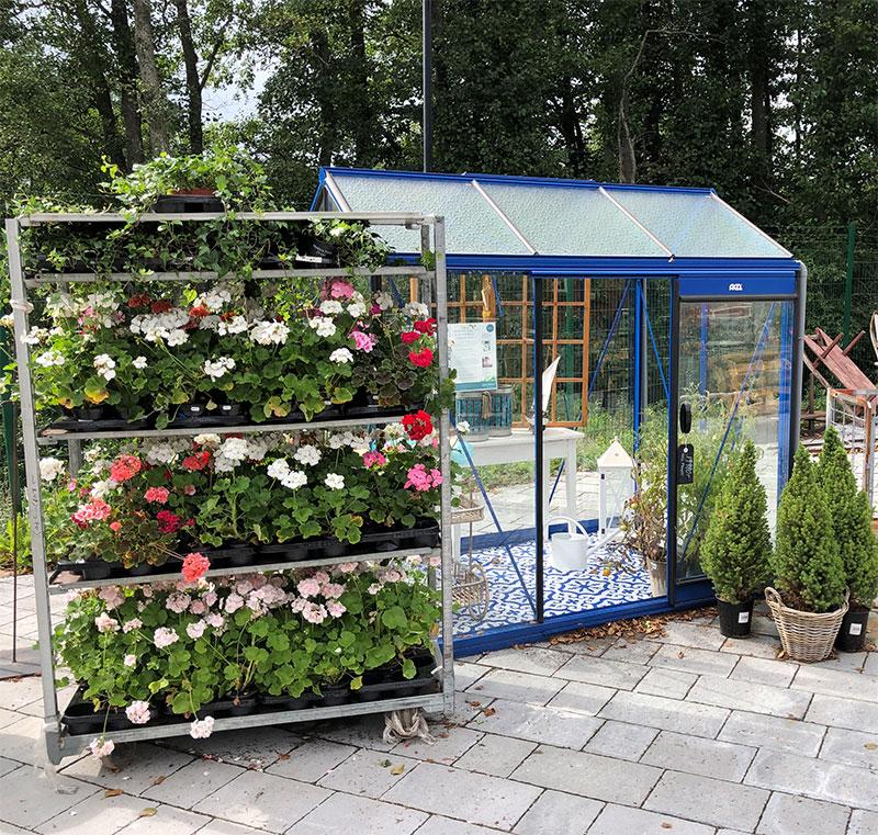 Växthusutställning på MÅngfaldens hus Nykvarn