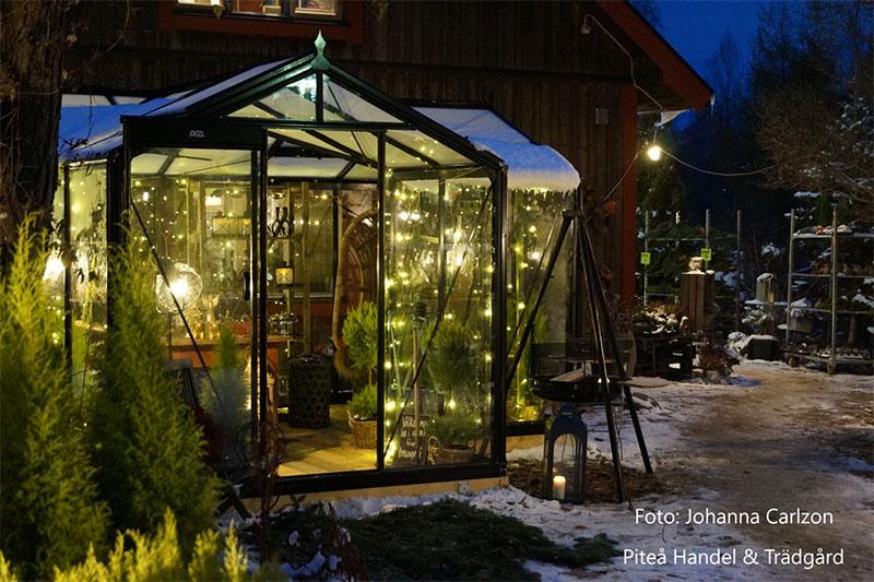 Växthusutställning orangeri hos Piteå Handel och trädgård